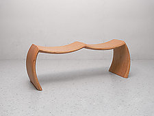 Dialogue Bench by Craig Siebeneck (Wood Bench)