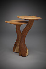 Two-Level Side Table by Aaron Laux (Wood Side Table)
