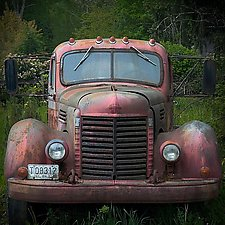Portrait of '48 International Flatbed in Field 1 by Steven Keller (Color Photograph)