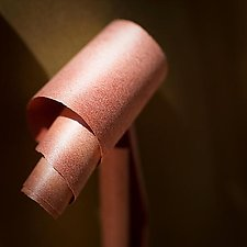 Peeling Madrone Bark No. 1 by Steven Keller (Color Photograph)