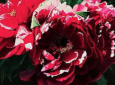 Lotsa Red Peonies by Barbara Buer (Giclee Print)