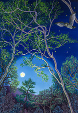 Circling the Moon by Wynn Yarrow (Giclee Print)