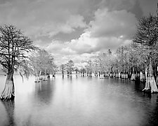 Lake Marion #6 by Paul Shatz (Black & White Photograph)