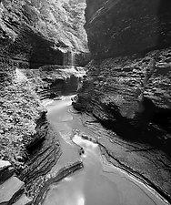 Watkins Glen by Paul Shatz (Black & White Photograph)