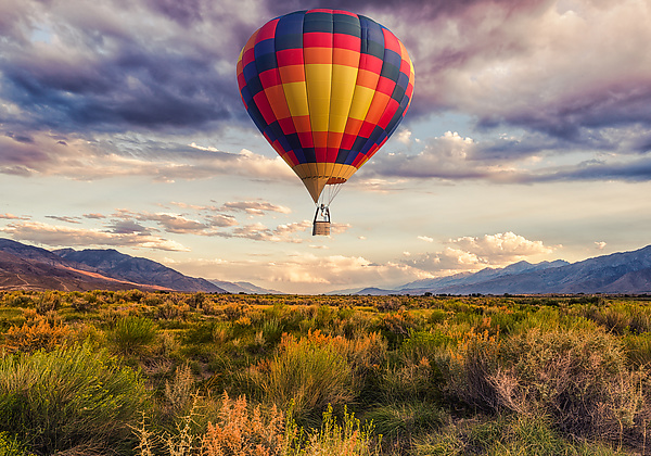 Hot Air Balloon Over the Landscape