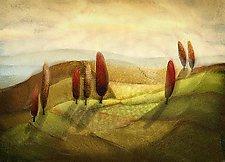 Poplar Hill by Deanna Henion (Pigment Print)