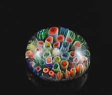 Sea Floor Paperweight by Jeremy Sinkus (Art Glass Paperweight)