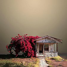 Abandoned House by Ed Freeman (Color Photograph)