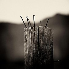 Nailed by James Bourret (Black & White Photograph)