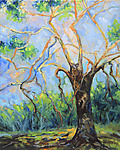 Tree Behind the House by Judy Hawkins (Oil Painting)