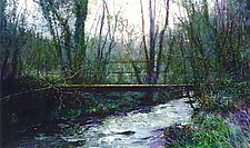 Small Bridge at Sunset by Ron Reams (Giclee Print)