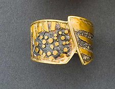 Geoscape Ring by Marne Ryan (Gold & Silver Ring)