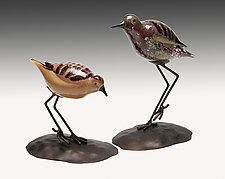 Shorebirds Pair by Janet Nicholson and Rick Nicholson (Art Glass Sculpture)