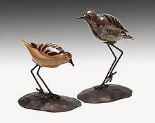 Shorebirds Pair by Janet Nicholson and Rick Nicholson (Art Glass Sculpture)
