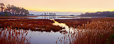 Assateague Sunrise by Richard Speedy (Color Photograph)