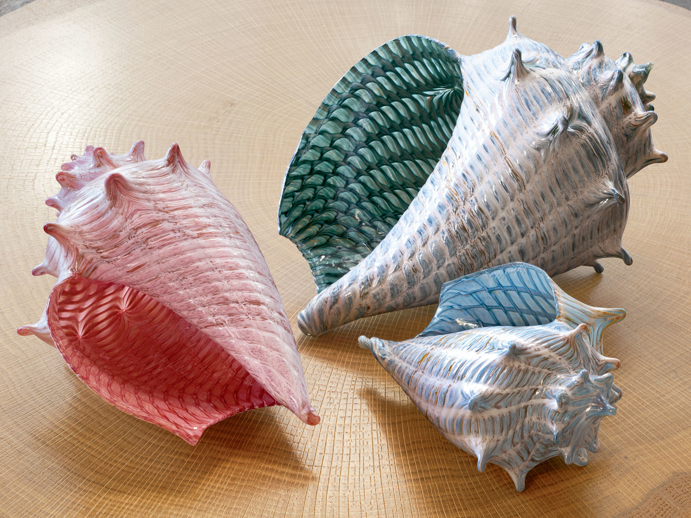 Optic conch shells by treg silkwood art glass sculpture Silkwood glass