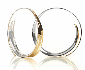 Sleek Hoops by Nancy Linkin (Gold & Silver Earrings)