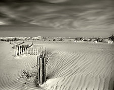 Anglesea Moire by Geoffrey Agrons (Black & White Photograph)