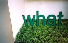 What by Jenny Lynn (Color Photograph)
