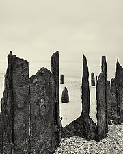 Bay Wraiths by Geoffrey Agrons (Black & White Photograph)