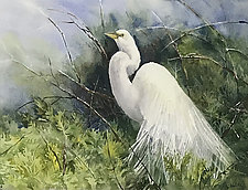 Regal Egret by Terrece Beesley (Watercolor Painting)