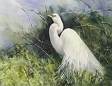 Regal Egret by Terrece Beesley (Watercolor Painting)