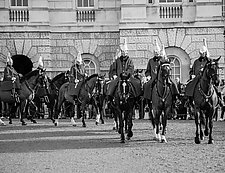 Queen's Guard by John Maggiotto (Black & White Photograph)