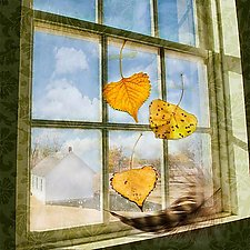 FallenFeather by Patricia Barry Levy (Pigment Print)