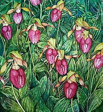 Moccasin Flower Field by Helen Klebesadel (Watercolor Painting)