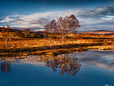 Loch Ba Reflections #1 by Matt Anderson (Color Photograph)