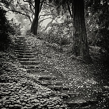 Twenty-Two Stone Steps by Geoffrey Agrons (Black & White Photograph)