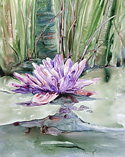 Water Lily by Maureen Kerstein (Giclee Print)