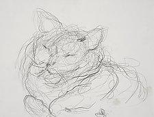 Gato by Nedra DiFilippo (Pigment Print)