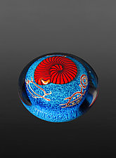 Red Nautilus on Sapphire Paperweight by Richard Satava (Art Glass Paperweight)