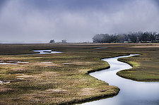 Estuaries by Lori Pond (Color Photograph)