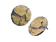 Small Cobblestone Button Earrings by Jenny Reeves (Gold & Silver Earrings)