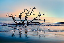 Edisto Daybreak by Richard Speedy (Color Photograph)