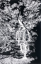 Deep Wood Falls II by William Hays (Linocut Print)