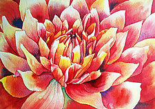 Dahlia by Helen Klebesadel (Watercolor Painting)
