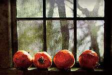 Country Window by Dar Spain (Color Photograph)