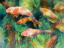 Nishikigoi by Terrece Beesley (Watercolor Painting)