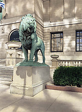 Lion by Steven Kozar (Giclee Print)