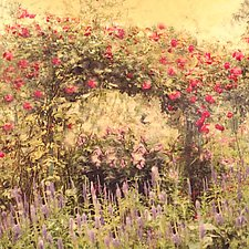 Monet's Garden by Julie Betts Testwuide (Color Photograph)