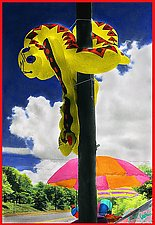 Snake on a Pole by Maurine Sutter (Color Photograph)