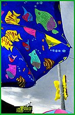 Flying Fish by Maurine Sutter (Color Photograph)