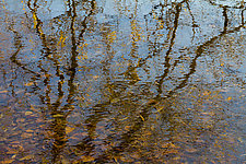 Reflecting Lake by Jed Share (Color Photograph)