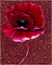 Red Poppy II by Rachel Tribble (Giclee Print)