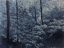 Forest in the Moonlight by William Hays (Linocut Print)