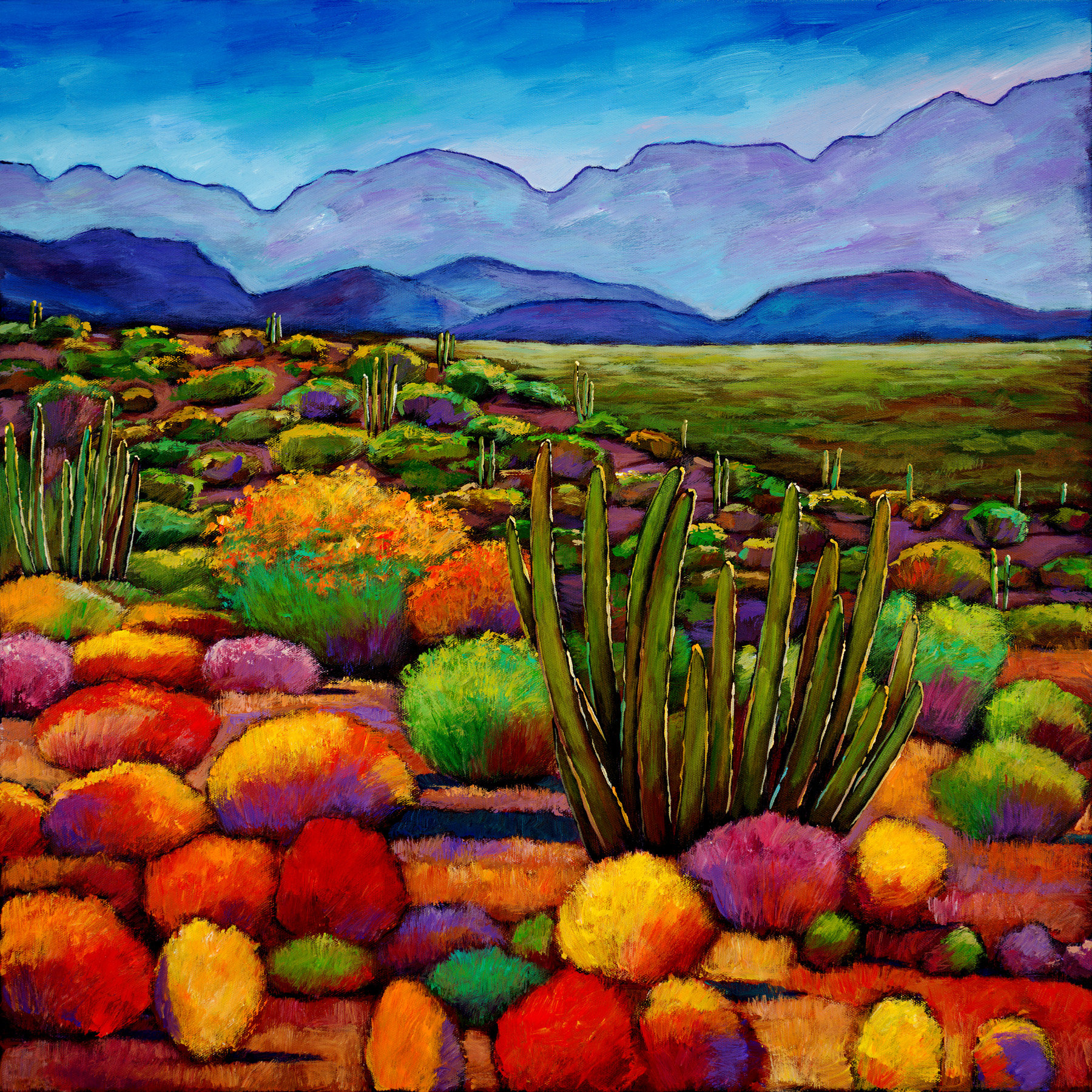 Arizona Modern Landscapes: Organ Pipe By Johnathan Harris (Giclee Print)