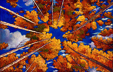 Aspen Vortex by Johnathan  Harris (Giclee Print)
